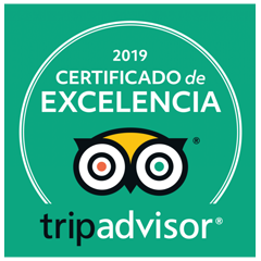 trip-certificado-2
